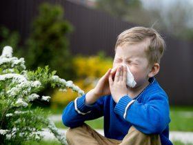 spreekbeurt over allergieen
