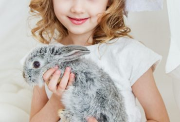 Kids For Animals