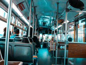 Busreizen